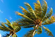 Florida Nature Photography
