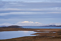 Lake Þingvallavatn in winter. South Iceland.