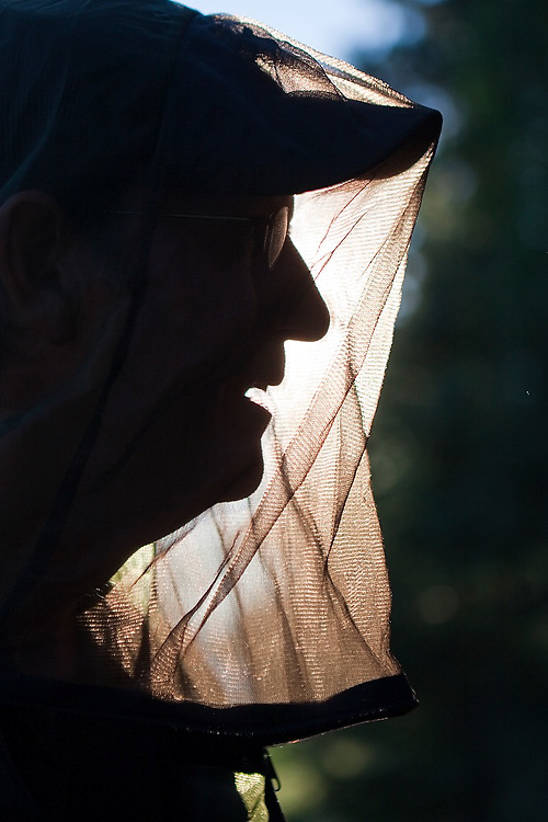 Parmenter Welty is backlit wearing his mosquito headnet on a hike in the Crystalline Hills, Wrangell-St. Elias National Park, Alaska.