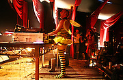 Fatboy Slim dressed as ballerina bumble bee playing Lost Vagueness at Glastonbury in 2007.