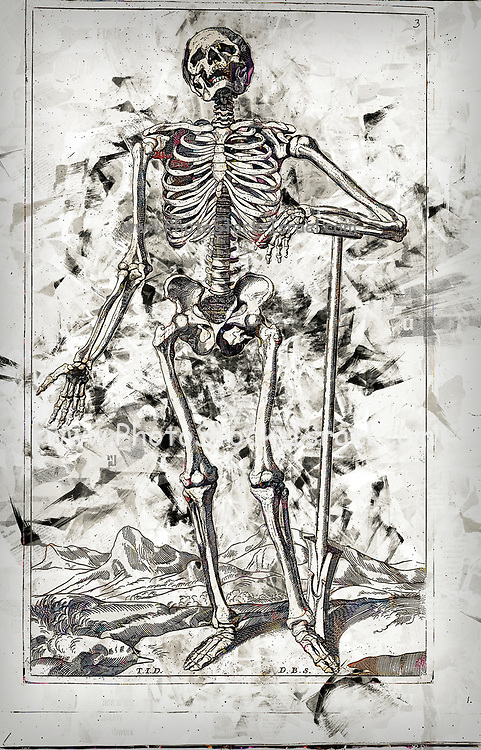 """Digitally enhanced image of a Male full body front skeleton woodcut print at the opening of the Human Anatomy book """"Notomie di Titiano"""" Printed in Italy in 1670"""