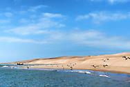 Sand dunes and beach at the Lagoon of Khenifiss (Lac Naila), Atlantic coast, Morocco.