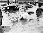 Y-480530-01. Three survivors, including a boy clinging to man, wade through waist-deep water at Entrance Circle in Vanport. The man carrying the boy is Roy Ludwig. The boy is Earl Woods, age 5.  May 30, 1948.