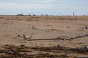 Belmonte_BA, Brasil...Homem na areia da Foz do Rio Jequitinhonha...A man on the sand in Jequitinhonha mouth...Foto: LEO DRUMOND / NITRO