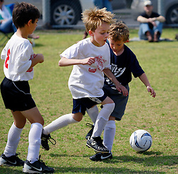 09 March 2013. New Orleans, Louisiana,  USA. .Carrolton Boosters Soccer. Under 8's. The Owls play the Dragons. .Photo; Charlie Varley.