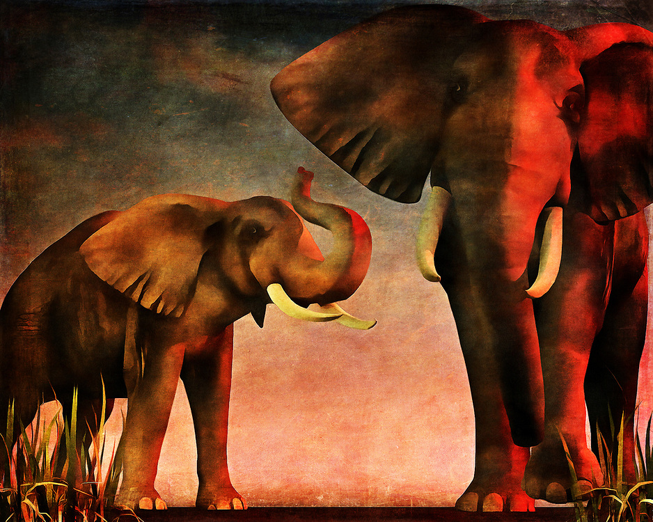 "The title of this piece is French. It translates to ""We've Seen You."" As you regard the message of the title in relation to the actual art of this piece, you will certainly also appreciate the remarkable detail and personality that is captured in this scene depicting two elephants. They have most certainly seen you, and there is no telling what might happen next. With a scene this gorgeous, the temptation is to get closer. However, sometimes, a respectful distance is a must. This piece is available for canvas prints, metal prints, acryl prints, framed prints, or on interior products like beach towels or duvet covers. .<br />