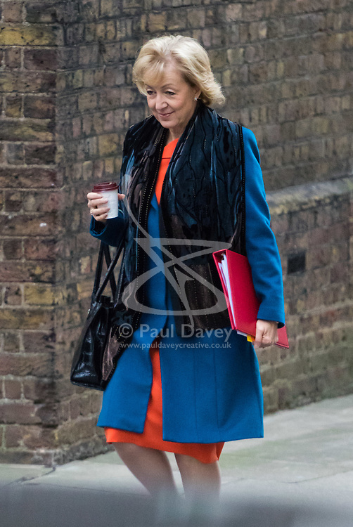 London, December 05 2017. Leader of the House of Commons Andrea Leadsom arrives at 10 Downing Street to attend the weekly cabinet meeting. © Paul Davey