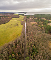 Aerial view of empty straight road surrounded by pine trees on coastline of Vormsi island in Estonia