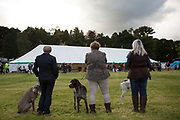 Dog show, an essential element of the 'Pateley Show', as the Nidderdale Show is affectionately known, is a traditional Dales agricultural show for the finest livestock, produce and crafts in the Yorkshire Dales. Held in the picturesque surrounds of Bewerley Park, Pateley Bridge, is one of the county's foremost shows. It regularly attracts crowds of 17,000 and traditionally marks the end of the agricultural show season.