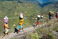 Madagascar. Retour du marché pour ces habitants des villages Zafimaniry. // Madagascar. Zafimaniry countryman back from market.