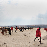 The Stars Foundation visiting S.A.F.E in the Loita Hills near the Tanzanian border in Kenya...It is mainly Maasais who live in the Loita Hills up above the Serengeti plains. They live in small villages and communities called bomas and live mainly of raising and selling live stock such as cattle and goats. Its a very remote region in Kenya, hard to get to without a four wheel drive with very little infrastructure and up till 2010 no mobile phone network. The Maasais are well known though out Kenya and the world for their colorful clothing and their way of keeping their old traditions alive.