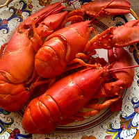 Fresh from the steamer, cooked Maine lobster is ready for hot butter.