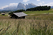Alpine huts on the Siusi plateau, above the South Tyrolean town of Ortisei-Sankt Ulrich in the Dolomites, Italy.