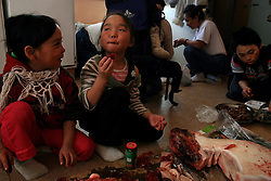 Family and friends gather to celebrate the birthday of a young girl and enjoy a variety of local foods - frozen halibut and arctic char, muktuk (beluga whale skin), frozen caribou shoulder, seal liver stew, and kiviaq (little auks fermented for months in a seal skin.) A changing climate - which shows itself in warming temperatures, earlier summers, later winters, and shrinking and thinning sea ice - threatens the livelihoods and traditions of some of the last subsistence hunters on Earth, the Polar Inuit communities of far Northwest Greenland.