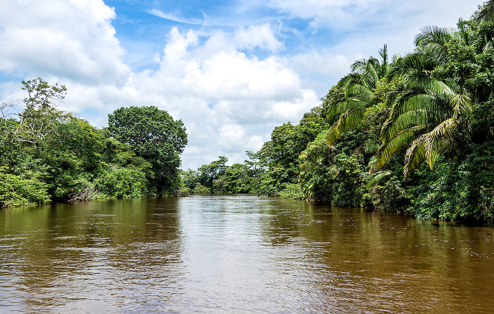 View of the Frio River in the Caño Negro Wildlife Refuge in Costa Rica.