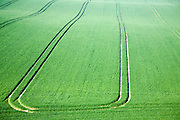 Cherhill, Wiltshire, England, UK, vehicle patterns in crops at foot of chalk scarp slope