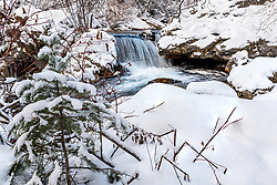 Winter Stream, Swan Valley Idaho.  When it dumps a foot of snow, the landscape photography begins.