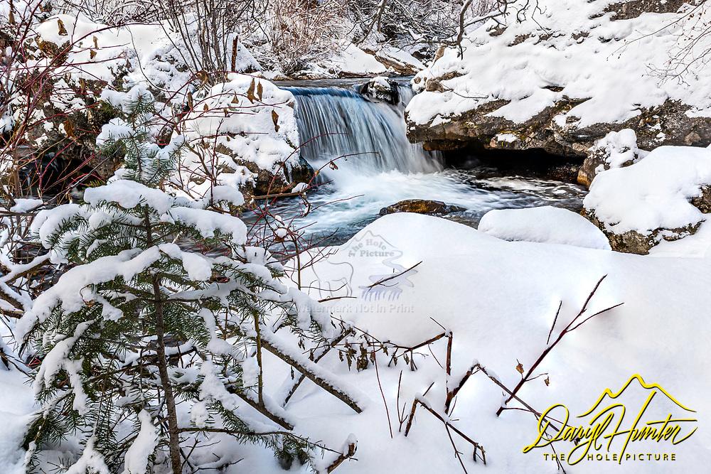 Winter Stream, Swan Valley Idaho
