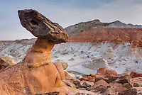 Rimrock Toadstools, Grand Staircase Escalante National Monument Utah