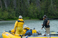"""People watch a Grey Wolf while on a 10 day raft trip down the Tashenshini River. The """"Tat"""" flows out of Yukon, CA, through British Columbia and empties into Glacier Bay National Park in Alaska, US. , World Heritage Site"""