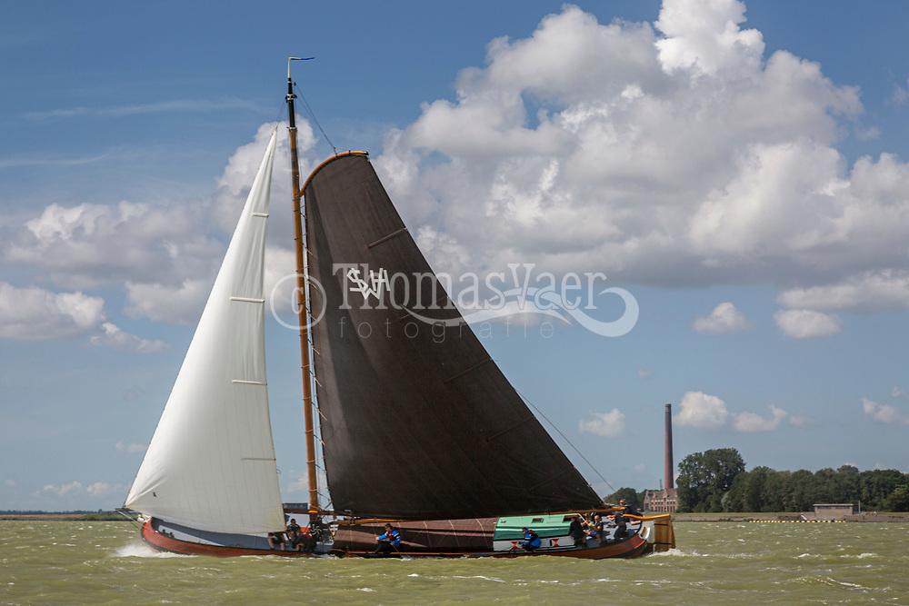 SKS Skûtsjesilen op het IJsselmeer bij Lemmer