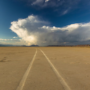 vehcle tracks lead to a passing storm in the Alvord Desert, south central Oregon