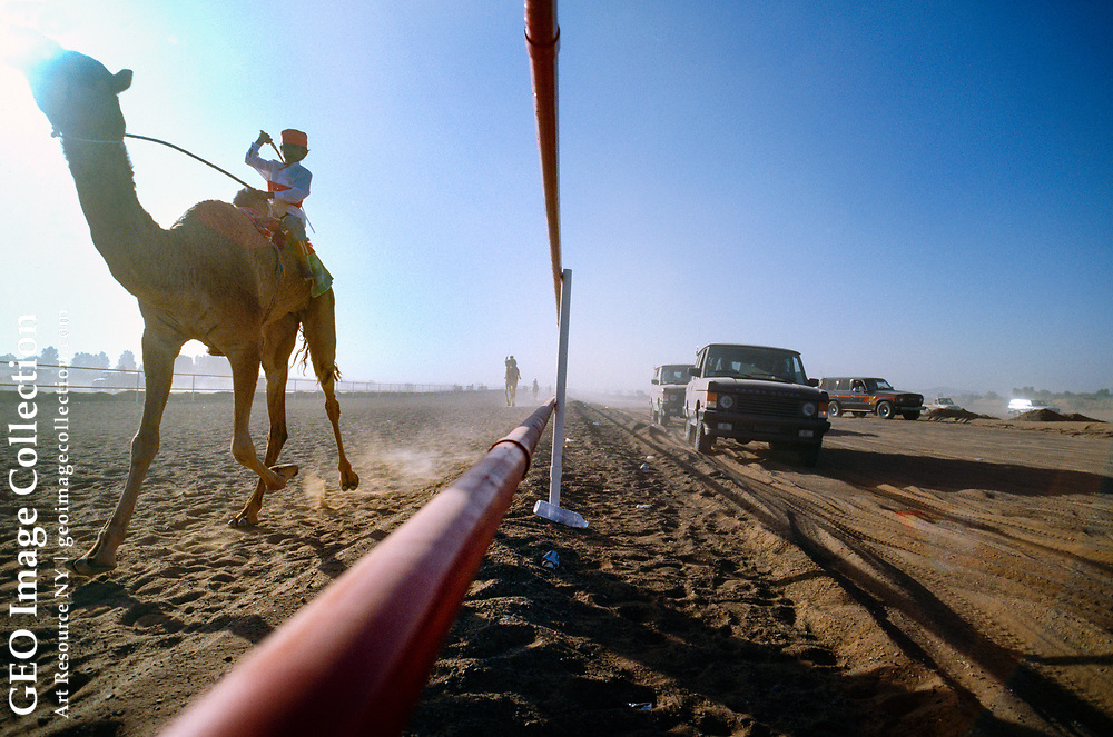 A Pakistani child jockey applies a whip to his camel at the Al Dhaid camel track in the emirate of Sharjah in the U.A.E.  while spectators race along the track in SUVs.  Before the introduction of robotic camel jockeys in 2001, Pakistani boys ages six to ten are brought from Pakistan during the winter season to race in United Arab Emirates.
