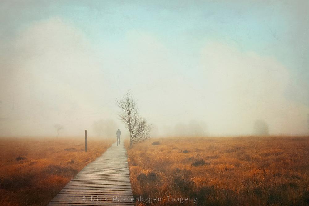 Hiking through the High Fens on a foggy wet November day
