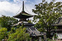 """Tatsueji Pagoda- Tatsue-ji is the first """"Sekisho"""" temple, there being one in each of the four prefectures of Shikoku. Sekisho were the """"barriers"""" or control points on highways in Japan from ancient times up until the late 19thcentury. Government officials would check the papers and passes of people traveling to make sure they had permission. Sekisho temples are a kind of spiritual checkpoint with the idea being that if you do not have the correct spiritual and mental attitude for the pilgrimage you should go back to the beginning and start again. There are even stories of people feeling unable to enter the grounds. The legend here is that of  a woman named Okyo who worked as a geisha, killed her husband and ran away with lover. They attempted a double suicide, but they decided to do become pilgrims instead. When got to this temple, her black hair twined around the bell, roped around her black hair and her head skin fell off."""