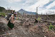 An elderly lady carries wood strapped to her back through the area devestated by the 2010 Mt Merapi eruption.