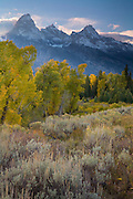 The Tetons and autumn colors along the Snake River, Grand Teton National Park, Wyoming.