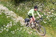 Enjoyable (and easy) singletrack descent through wildflowers to the A44 on the edge of Bourton on the Hill