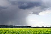 Nederland, Persingen, 2-10-2019Foto van een mooie lucht en een overtrekkende regenbui.Foto: Flip Franssen