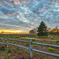 Massachusetts landscape sunset photography of the beautiful Belkin Family Lookout Farm with a bunch of Hyacinth flowers in Natick, MA.<br /> <br /> South Natick Belkin Family Lookout Farm photography images are available as museum quality photo, canvas, acrylic, wood or metal prints. Fine art prints may be framed and matted to the individual liking and interior design decoration needs:<br /> <br /> https://juergen-roth.pixels.com/featured/belkin-farm-juergen-roth.html<br /> <br /> Good light and happy photo making!<br /> <br /> My best,<br /> <br /> Juergen