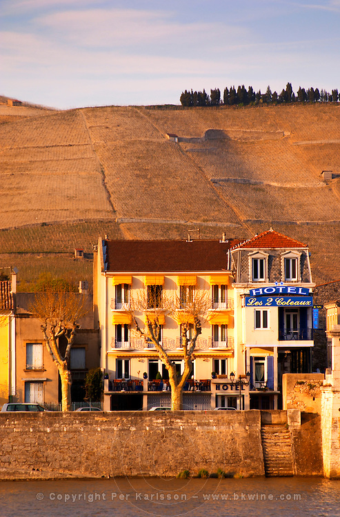 A hotel along the river called Les 2 Coteaux (the two river sides) with plane platane trees and yellow sun shades. The Hermitage vineyards on the hill behind the city Tain-l'Hermitage, on the steep sloping hill, stone terraced. Sometimes spelled Ermitage. Tain l'Hermitage, Drome, Drôme, France, Europe