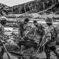 Fea0093883. DT News.Tananarive a mining village near AMBATONDRAZAKA,The Ankeniheny-Zahamena Corridor, Madagascar.Pic Shows miners working through the mud looking for sapphires in the village of Tananarive