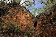 Land abandonment. Salamanca Region, Castilla y León, Spain