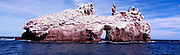 A view of the smaller of the islands known as Los Islotes, Sea of Cortez, Mexico