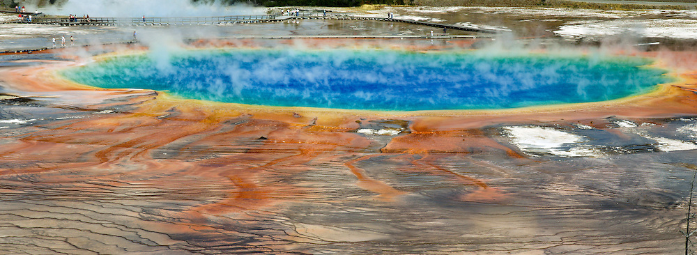 """Colorful microbial mats coat terraces of Grand Prismatic Spring in Midway Geyser Basin, Yellowstone National Park, Wyoming, USA. Grand Prismatic is the largest hot spring in the United States, and the third largest in the world, next to those in New Zealand. The sterile blue water in the pool's center is too hot to support life (87 degrees Centigrade or 188 F). Pure water selectively absorbs red wavelengths of visible light, making the center deep blue. But in cooler water along the edges, microbial mats of thermophilic (heat-loving) cyano-bacteria and algae thrive. Yellow, orange, and red pigments are produced by the bacteria as a natural sunscreen. As a result, the pool displays a spectrum of colors from the bright blue water of the center to the orange, red, and brown algal mats along the edges. Summer mats tend to be orange and red, whereas winter mats become dark green. Yellowstone was the first national park in the world (1872), and UNESCO honored it as a World Heritage site in 1978. Photo was published in """"Light Travel: Photography on the Go"""" book by Tom Dempsey 2009, 2010.  Three overlapping images were stitched to make this panorama."""