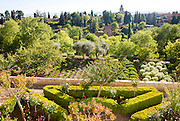 View over trees and gardens, Generalife garden, Alhambra, Granada, Spain