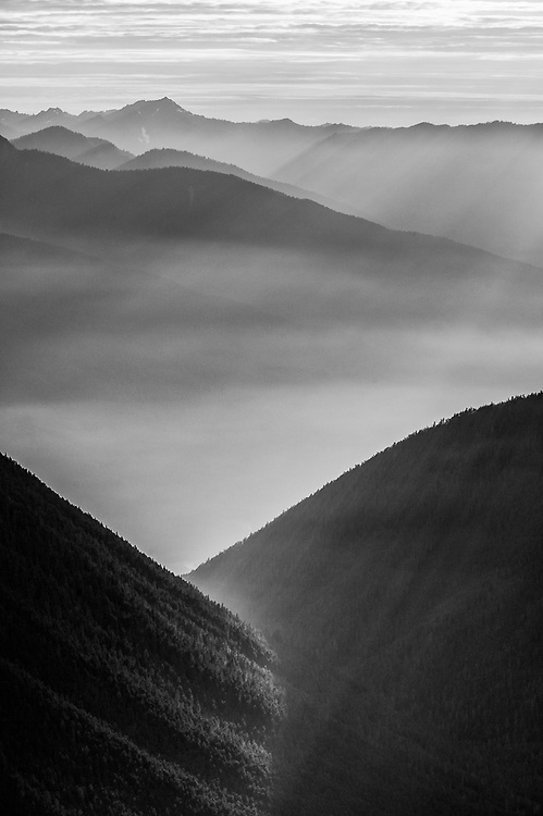 Lillian River Valley, August haze, evening light, telephoto view from the Obstruction Point area, Olympic National Park, WA, USA