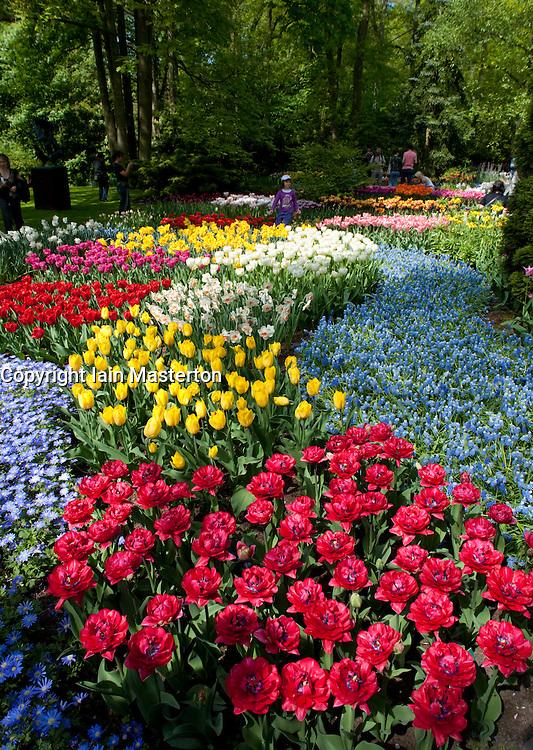 Colourful flowers at Keukenhof Garden in Lisse The Netherlands April 2009