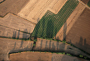 Spain, Catalonia, agricultural fields elevated view