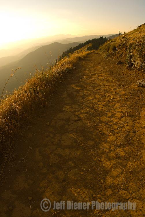 The Dog Mountain Trail in the Columbia River Gorge, Washington.