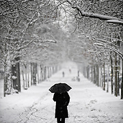A man is walking on down the Parc alleys covered by the snow. Dijon, France - December 18th 2009.