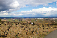 The Wine Route in early spring in Beaujolais, France.