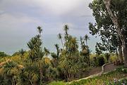 Batumi Botanical Garden is a 108 hectare area of land 9 km north of the city of Batumi, capital of Autonomous Republic of Adjara, Georgia.