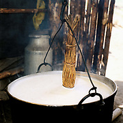 A cauldron of sheep's milk for making cheese to make cheese at a sheepfold, Romania. Whereas in many countries sheep are reared for wool and meat, in Romania these are seen as by-products and the real purpose of the flock is to produce branza or cheese.