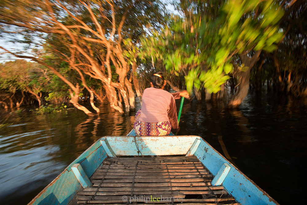 A woman travels through the flooded forest near her floating village of Kompong Phluk on the great Tonlé Sap lake, Cambodia