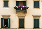 A woman with a dog gazes out one of six windows with green shutters in an apartment building in Montespertoli, Italy. A balcony adorned with flowers is entered in a competition during the annual wine festival.